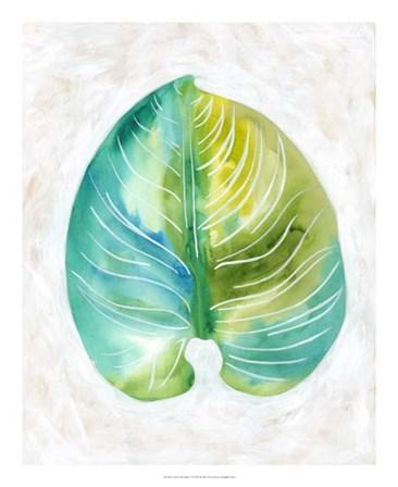 Ocean Side Palms  I by Chariklia Zarris art print