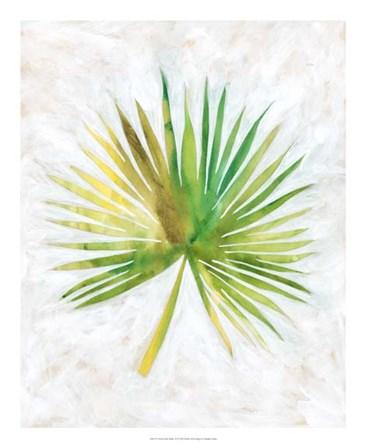 Ocean Side Palms  II by Chariklia Zarris art print