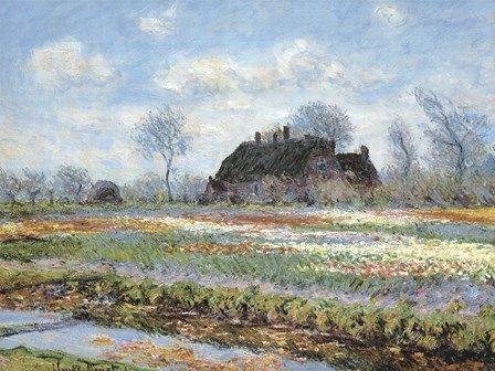 Tulip Fields at Sassenheim by Claude Monet art print