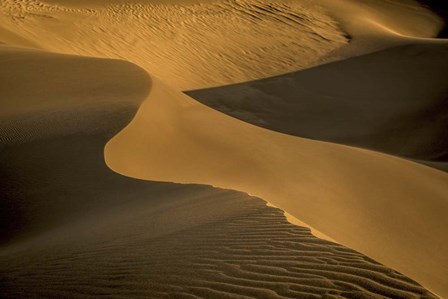 Sand Dunes by Dan Ballard art print