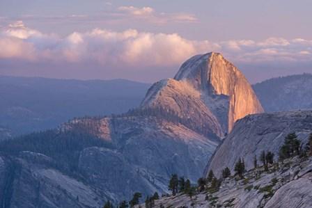 Sunny Mountain Top by Adam Burton art print
