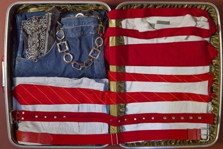 American Suitcase by Roderick E. Stevens art print