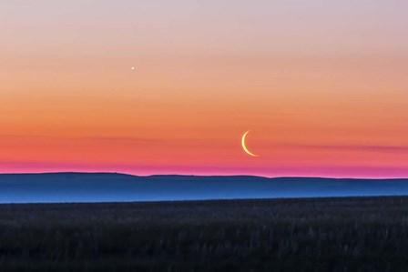 Moon and Venus rising over the flat prairie horizon of Alberta, Canada by Alan Dyer/Stocktrek Images art print