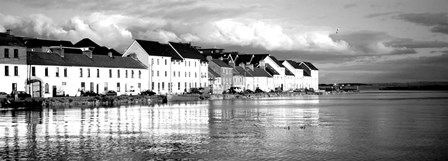 Galway, Ireland BW by Panoramic Images art print