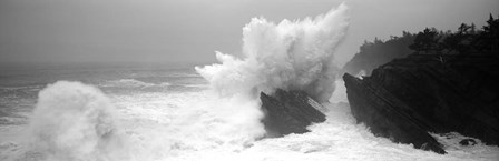 Waves breaking on the coast, Shore Acres State Park, Oregon BW by Panoramic Images art print