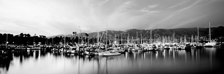 Boats moored in harbor at sunset, Santa Barbara Harbor, California by Panoramic Images art print