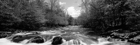 Little Pigeon River, Great Smoky Mountains National Park, Tennessee by Panoramic Images art print