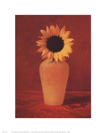 Sunflower Still Life art print