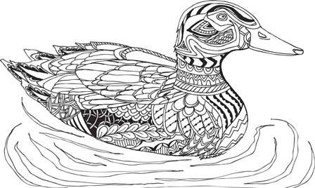 Duck by Shacream Artist art print