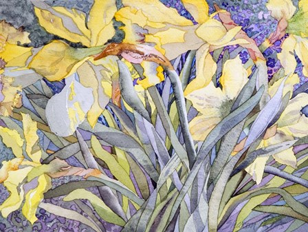 Daffodils, Van Vleck by Sharon Pitts art print