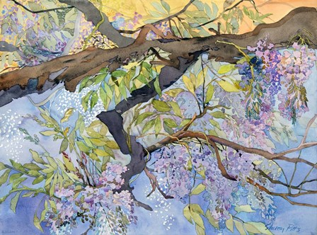 Wisteria, Van Vleck by Sharon Pitts art print