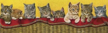 Eight Kittens In Basket by Janet Pidoux art print