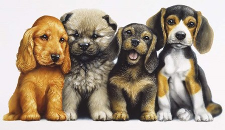 Young Dogs by Harro Maass art print