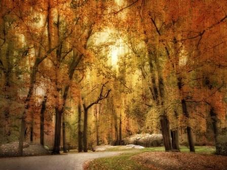 Autumn Impressions by Jessica Jenney art print