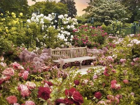 The Rose Garden by Jessica Jenney art print