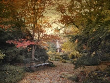 A Formal Garden by Jessica Jenney art print