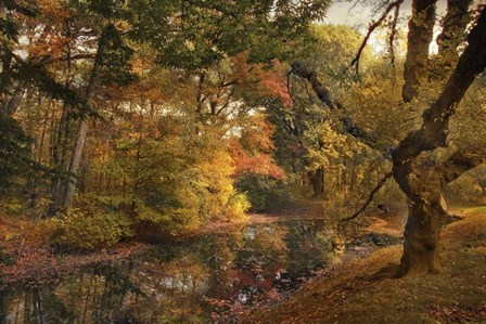 Autumn's Edge by Jessica Jenney art print