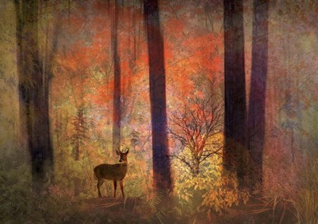The Visitor by Jessica Jenney art print