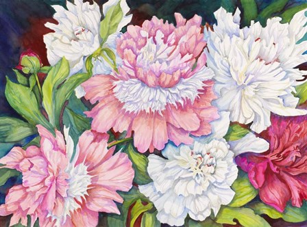 A Peony Cluster by Joanne Porter art print