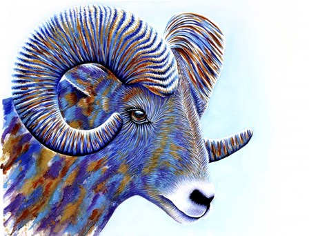 Ram by Michelle Faber art print