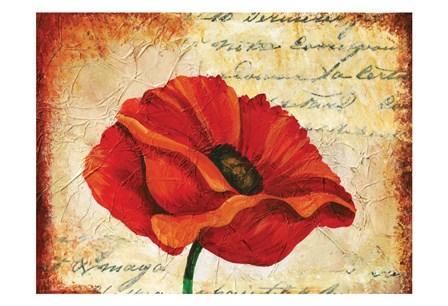 Poppy Script by May art print