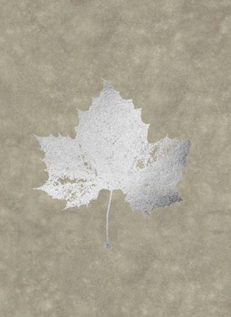 Silver Foil Leaf II on Lichen Wash by Jennifer Goldberger art print