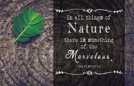In all things of Nature by Quote Master art print