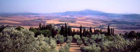 View of a Landscape, Tuscany, Italy by Panoramic Images art print