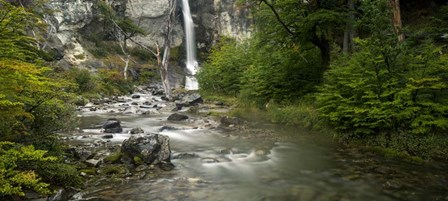 Forest Waterfall, Patagonia, Argentina by Panoramic Images art print