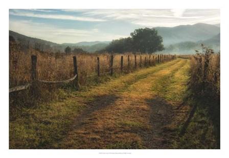 Grassy Lane by Danny Head art print