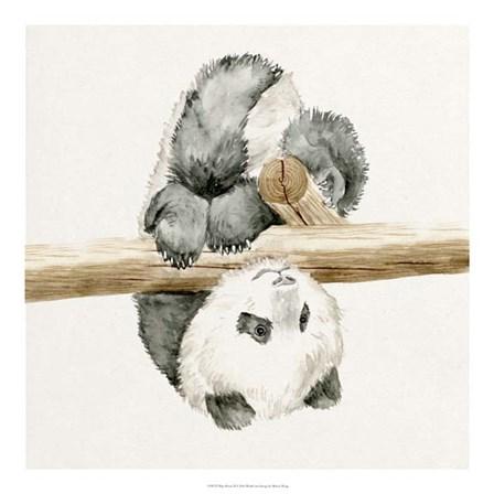 Baby Panda II by Melissa Wang art print