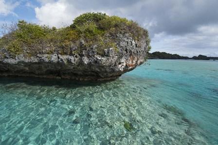 Fiji, Island of Fulanga. Lagoon inside volcanic caldera. Mushroom islets, limestone formations. by Cindy Miller Hopkins / Danita Delimont art print