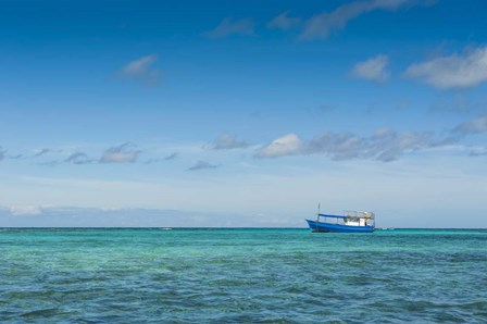 Fishing boat in the turquoise waters of the blue lagoon, Yasawa, Fiji, South Pacific by Michael Runkel / DanitaDelimont art print