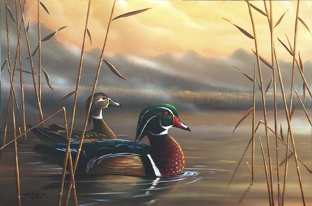 Wood Ducks by Geno Peoples art print