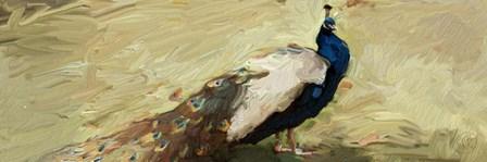 Peacock Panel 1 by Sarah Butcher art print