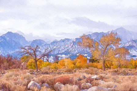 High Desert Vista IV by Ramona Murdock art print