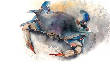 Crab by Sophia Rodionov art print