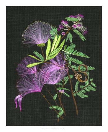 Calliandra Surinamensis II by Melissa Wang art print