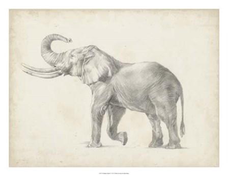 Elephant Sketch I by Ethan Harper art print