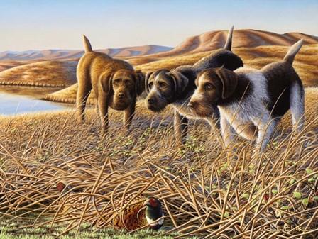 The Perfect Trio by Chuck Black art print