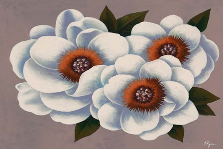Three White Flowers by Vivien Rhyan art print