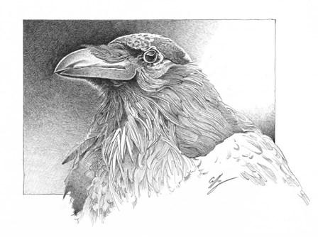 Ravens Head by Durwood Coffey art print