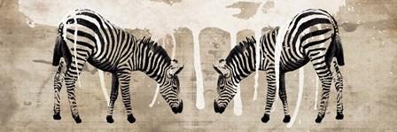 Two Zebras by Erin Clark art print