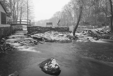 Colorless by Eye of the Mind Photography art print