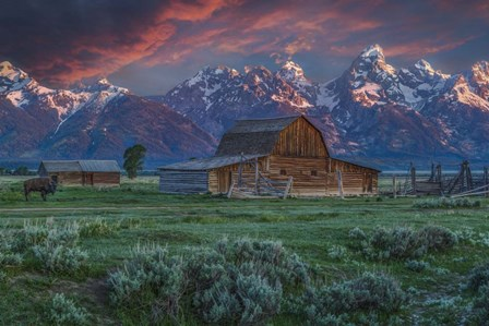 Grand Teton Mormon Barn At Sunrise by Galloimages Online art print