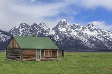 Mormon Row Log Cabin by Galloimages Online art print