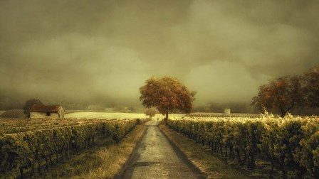Through The Vineyard by Lars Van De Goor art print