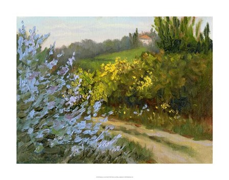 Rosemary by the Road by Mary Jean Weber art print