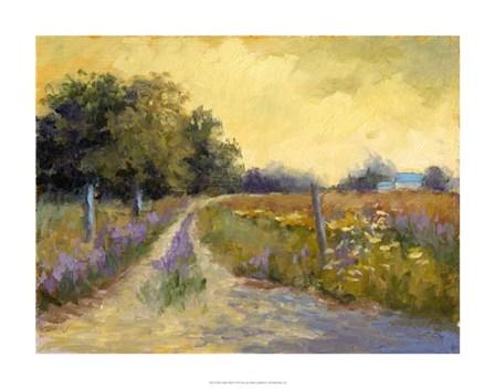 Fall's Golden Fields by Mary Jean Weber art print