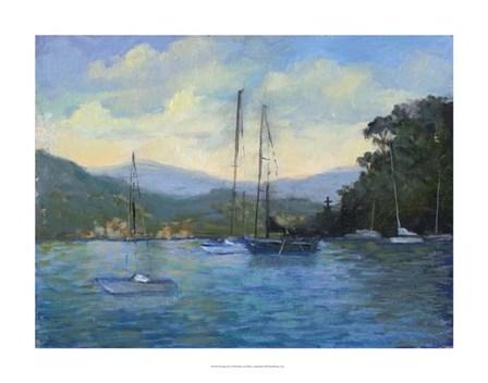 Portofino Bay by Mary Jean Weber art print